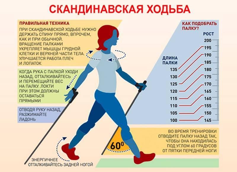 Скандинавская ходьба с палками, основные правила, польза и вред