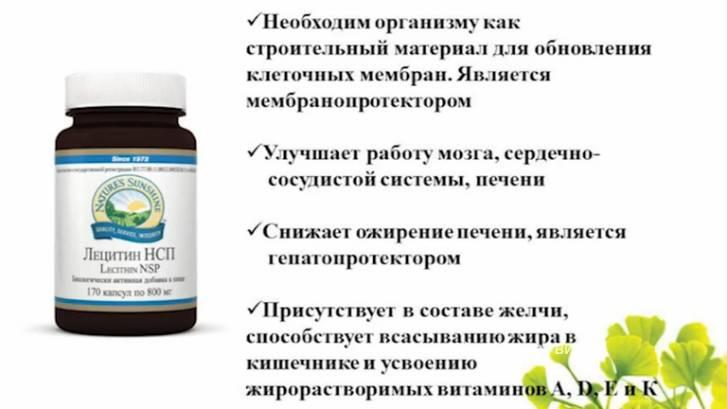 Аргинин и орнитин (l-аргинин/l-орнитина) дефицит и влияние на организм | мое здоровье аргинин и орнитин (l-аргинин/l-орнитина) дефицит и влияние на организм | мое здоровье