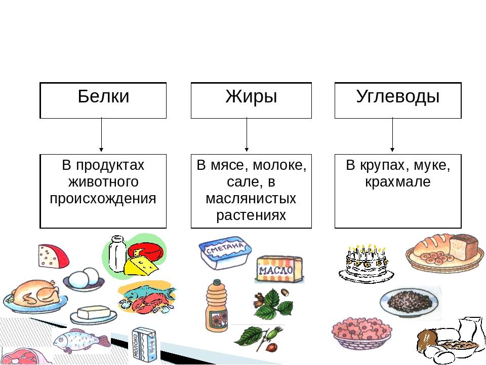 Бжу: белки, жиры, углеводы — как образуются, определение, баланс бжу: продукты богатые углеводами, жирами и белками, таблица - содержание на 100 грамм, калорийность