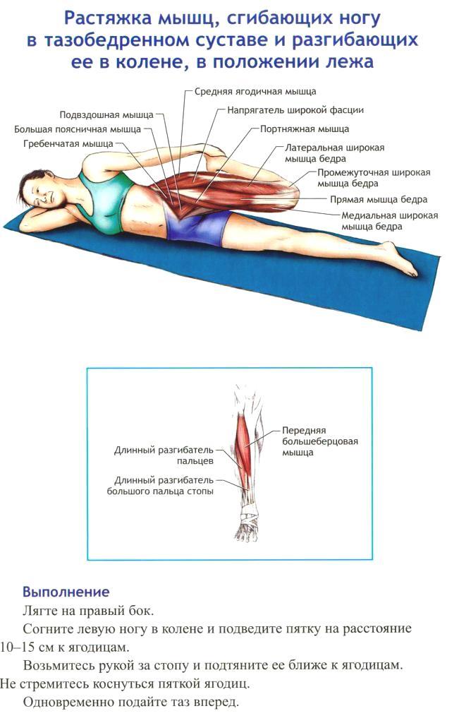 Стретчинг: упражнения для ягодичных мышц, которые избавят от целлюлита