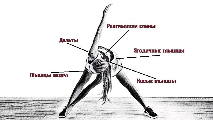 Как правильно делать упражнение мельница