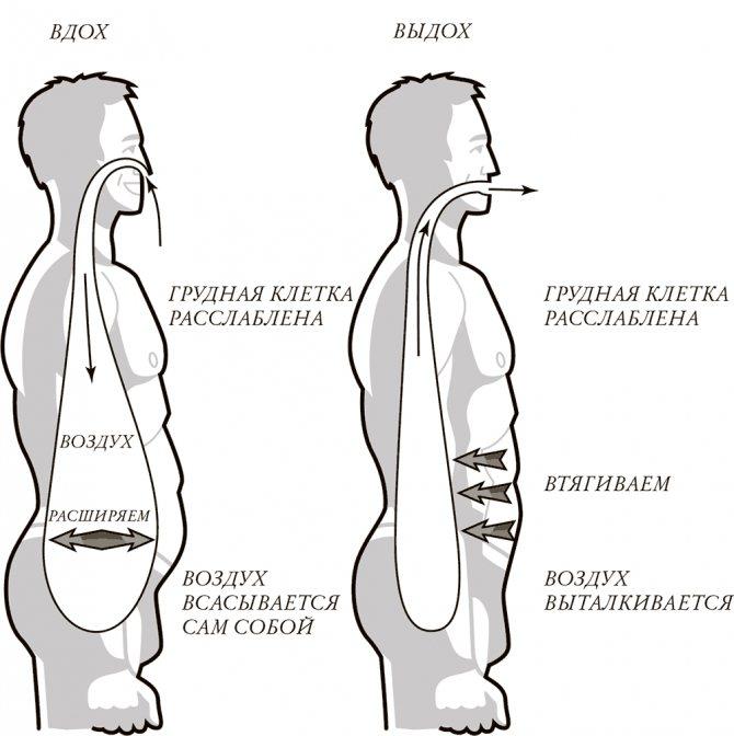 Диафрагмальное дыхание: польза, упражнения и как его развить