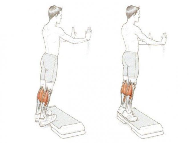 Как накачать икроножные мышцы?