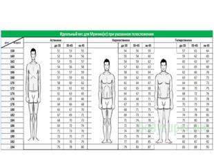 Идеальные пропорции женского тела: это какие?