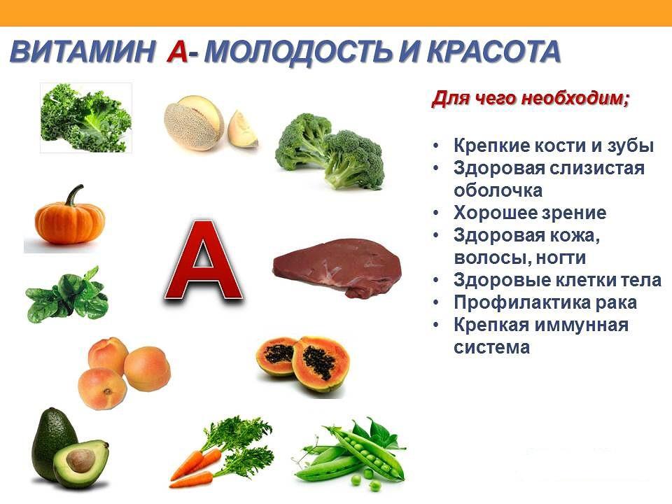 20 продуктов, богатых витамином a: список продуктов с витамином a