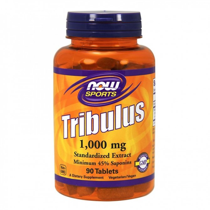 Трибулус — схема приема для повышения тестостерона и противопоказания