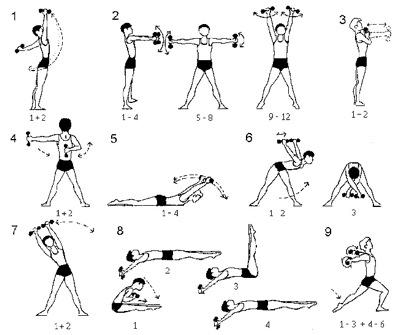 Атлетическая гимнастика: комплекс упражнений для новичков