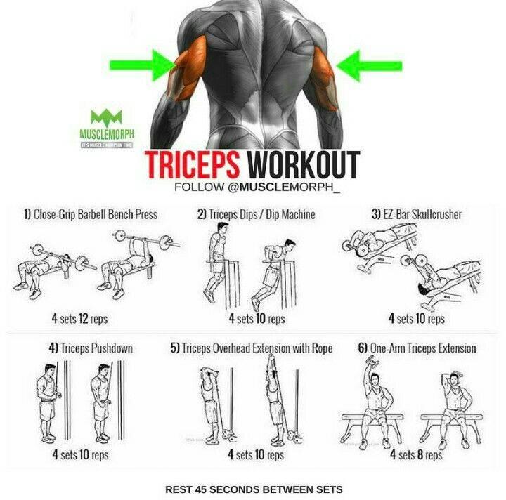 10 лучших упражнений на трицепс