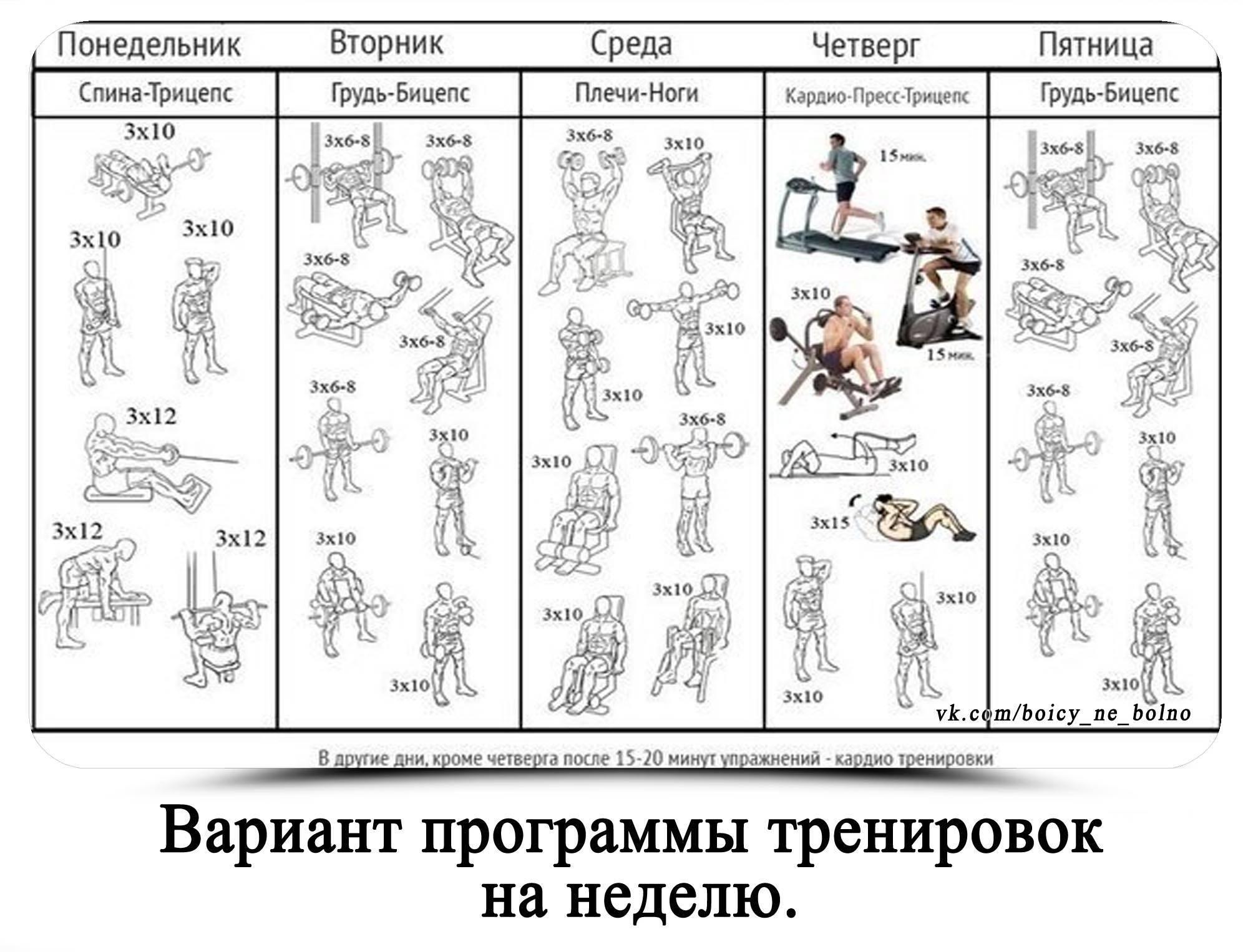 Метод «пирамиды» в силовых тренировках: эффективность и применение
