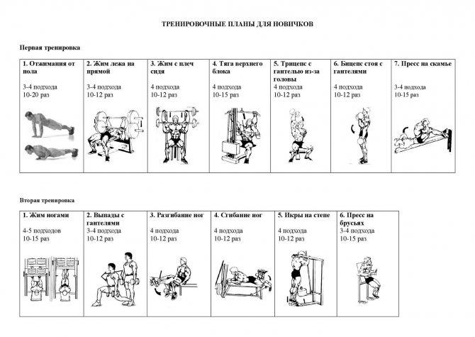 Шейко борис иванович: программы тренировок