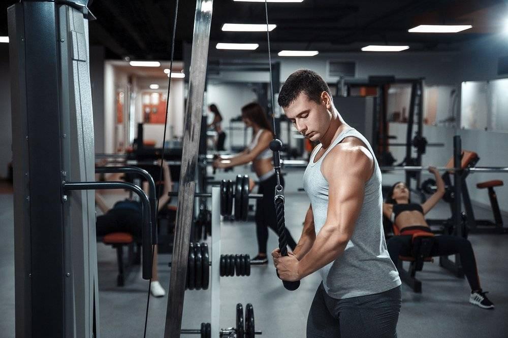 Лучшие базовые упражнения для трицепса: точно в цель