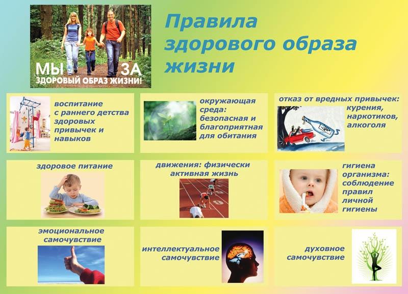 Здоровый образ жизни. статья