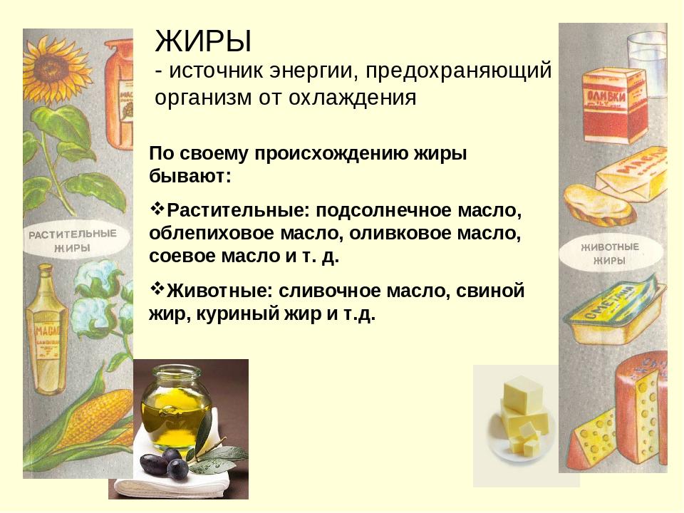 Самые полезные жиры: список продуктов