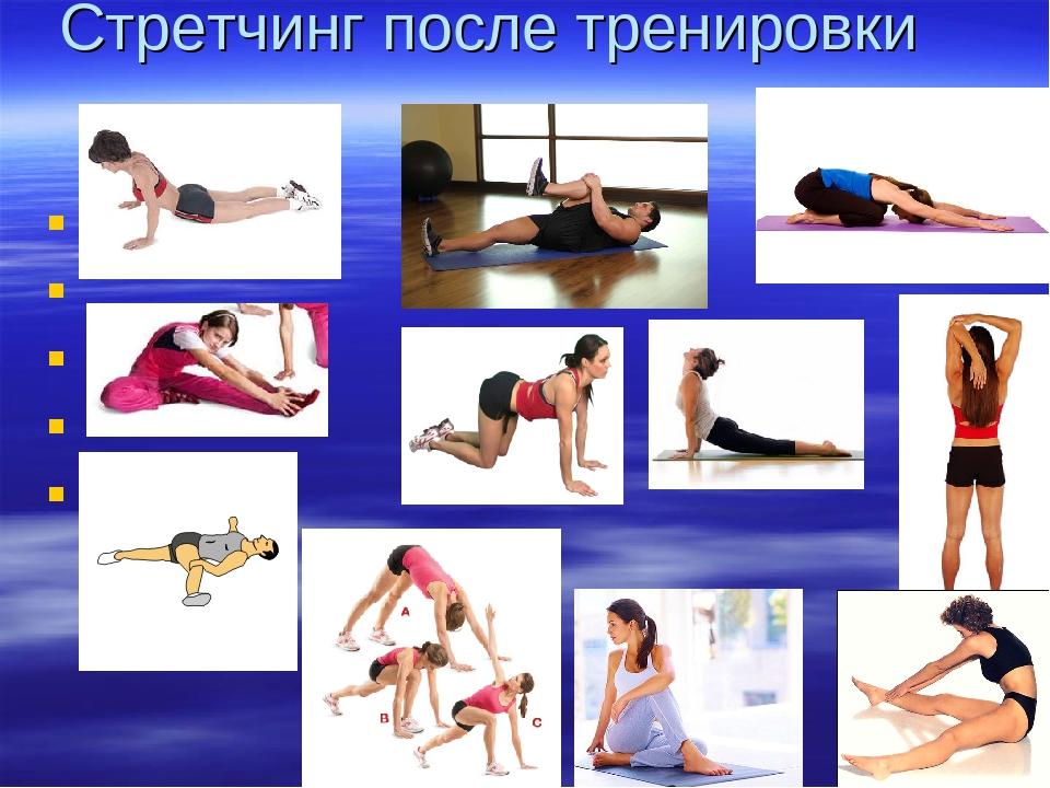 Значение и правильное проведение растяжки после тренировки