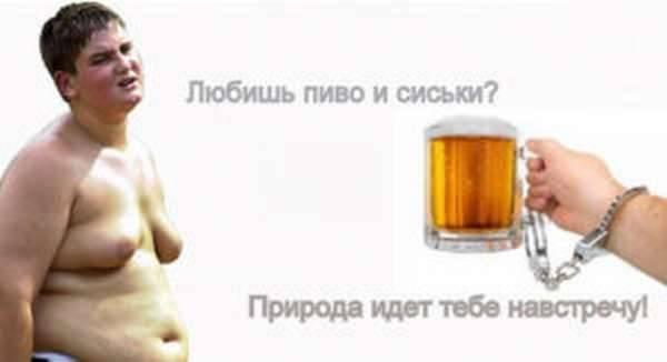 Пиво и мышцы | блог константина зубкова