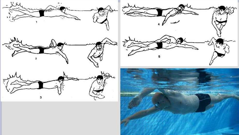 Как плавать под водой правильно и быстро: техника плавания и как ей научиться в бассейне?