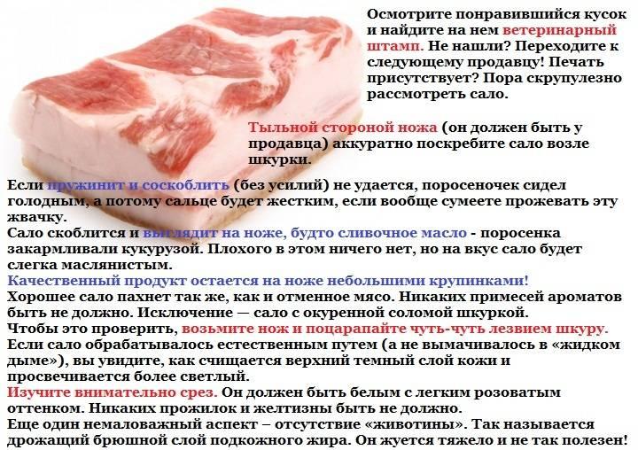 Свиное сало – польза и вред для организма