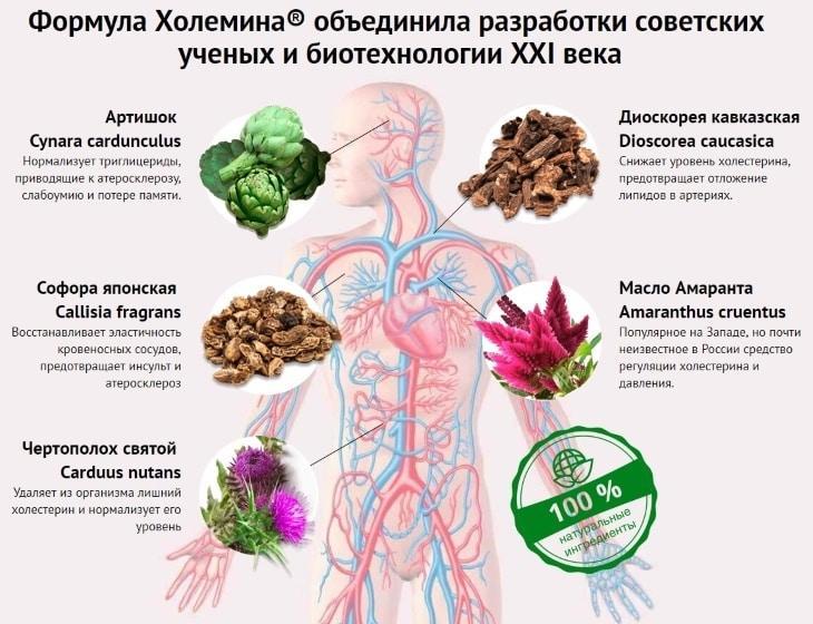 Продукты, снижающие холестерин и очищающие сосуды: подробная таблица