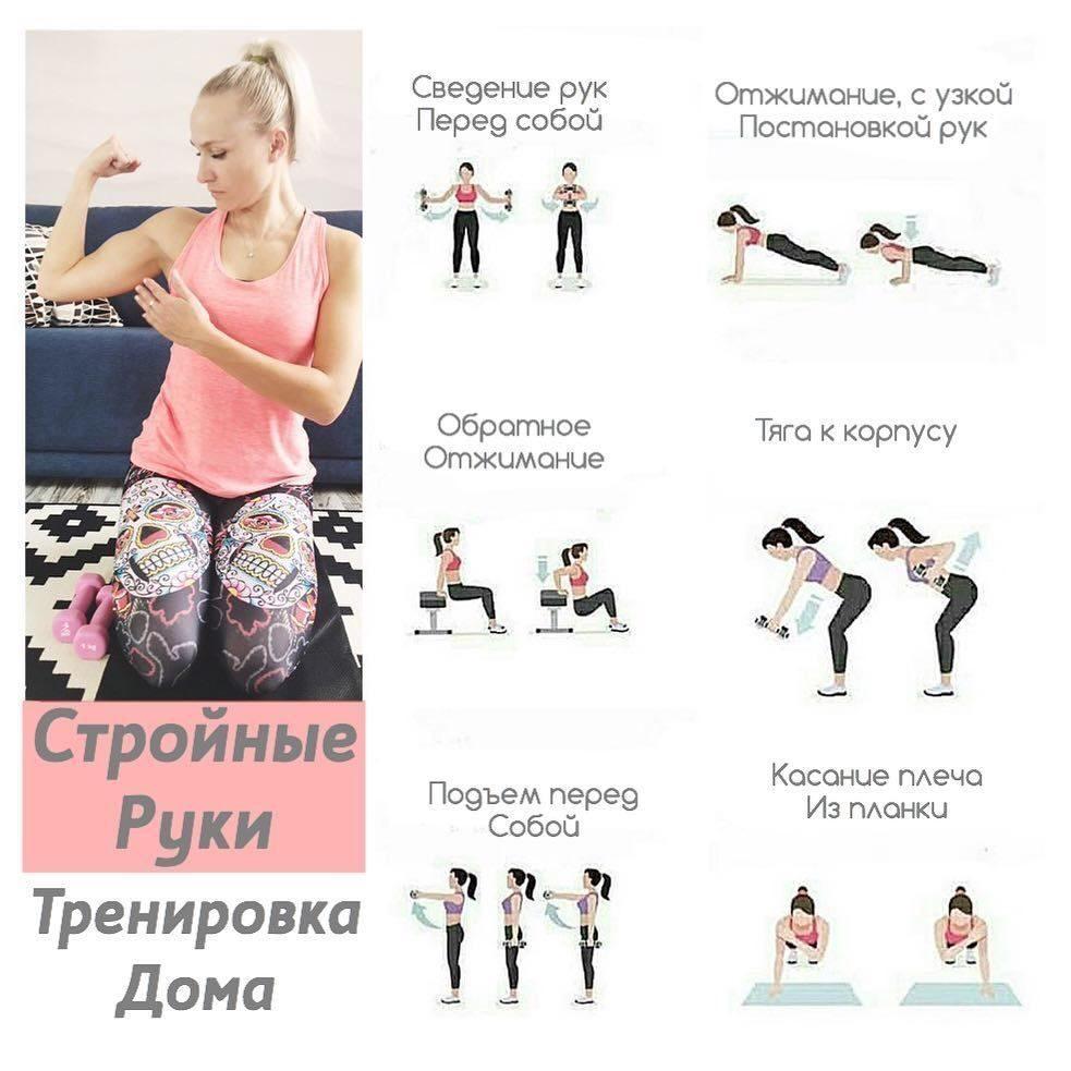 Тренировки для похудения: лучшие программы жиросжигающих упражнений в домашних условиях и тренажерном зале