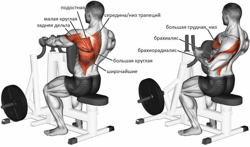 Рычажная тяга, плюсы и минусы тренажеров, особенности упражнений