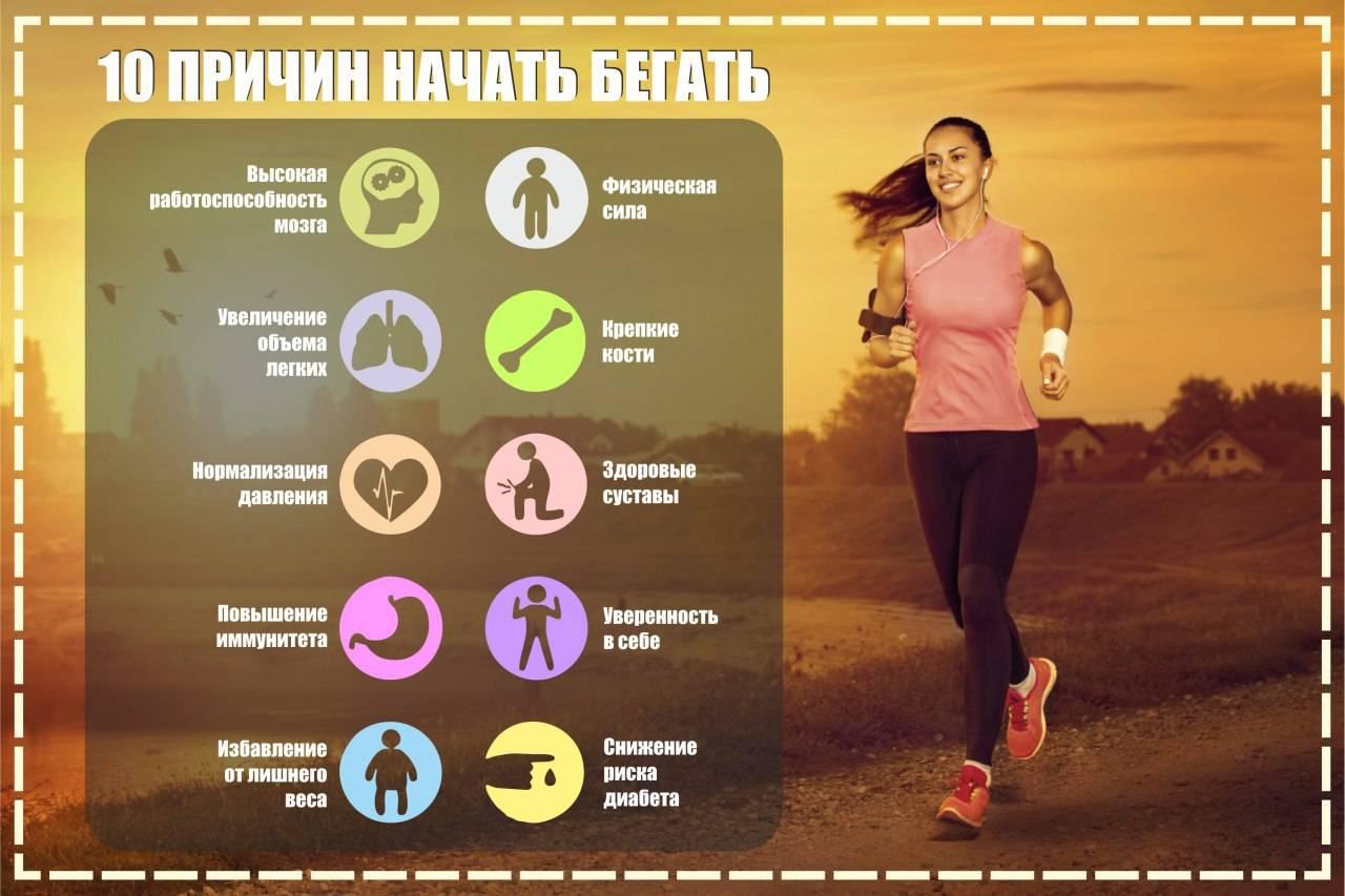 Когда лучше заниматься спортом, чтобы похудеть и подкачать мышцы: утром или вечером?