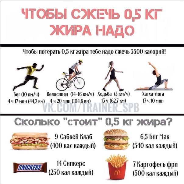 Вся правда о том, как сжечь жир на животе быстро и эффективно!