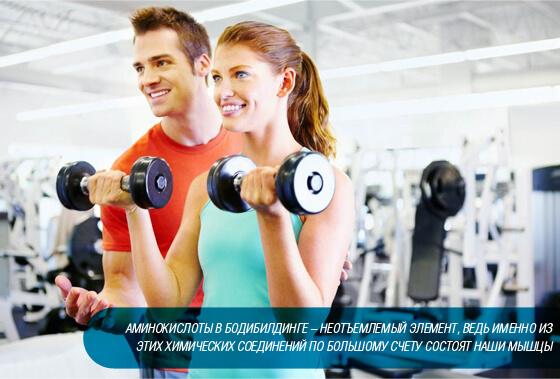 Для чего нужен глютамин в спорте и бодибилдинге и нужен ли вообще? научные исследования | promusculus.ru