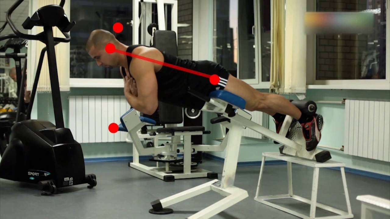 Упражнения для укрепления поясницы: в тренажерном зале и дома