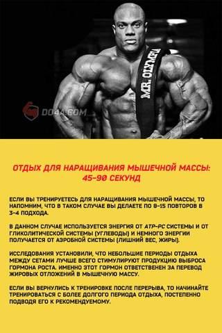Отдых между подходами— оптимальный интервал для роста мышц