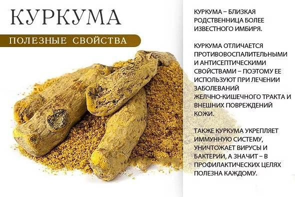 Куркума и ее полезные свойства, противопоказания и рецепты приготовления