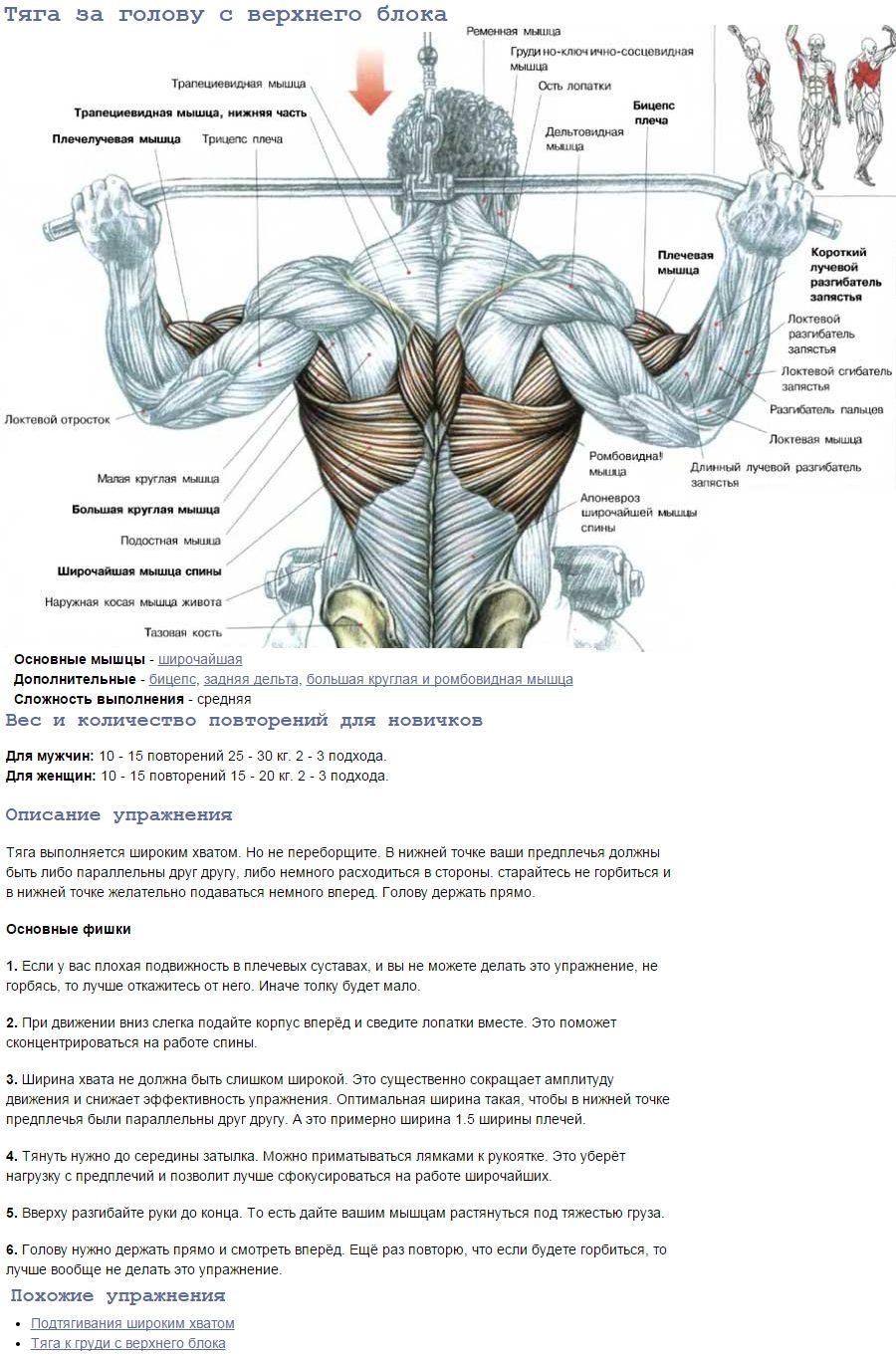 Тяга верхнего блока за голову для v спины