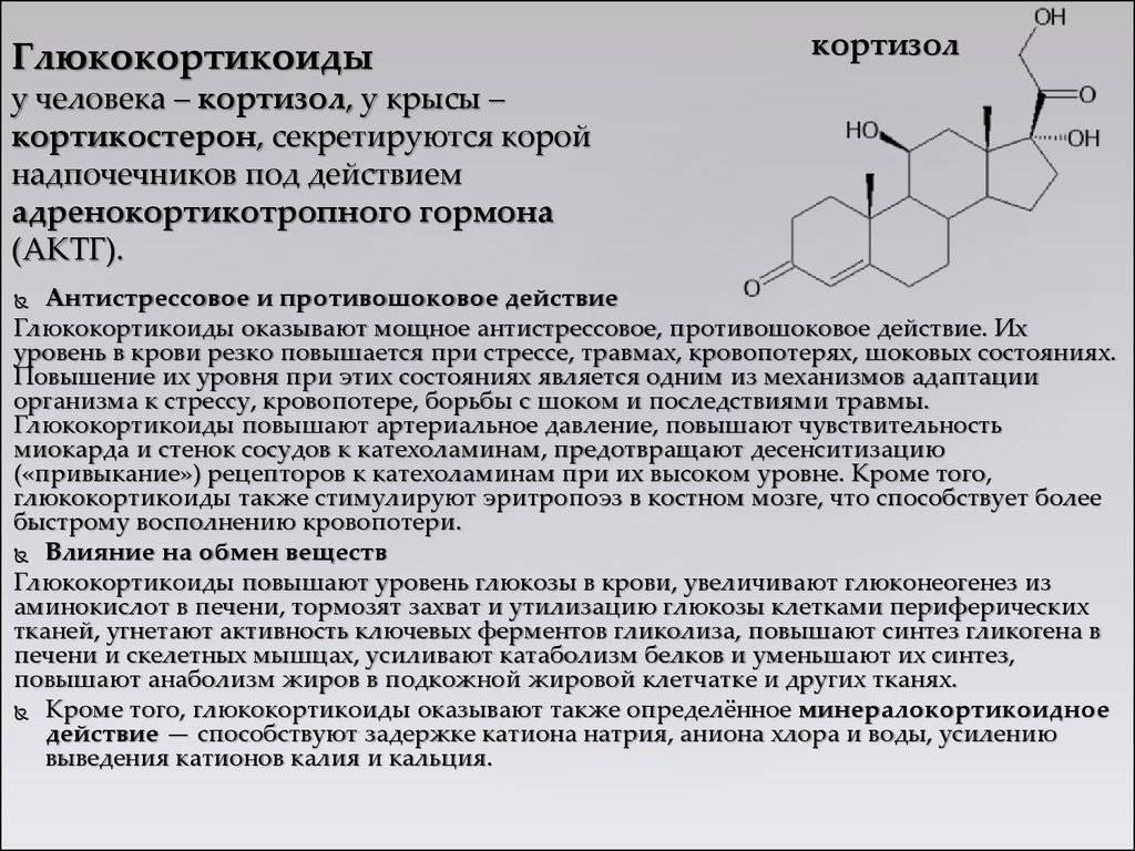 Гормон стресса кортизол, за что отвечает у женщин и у мужчин, влияние на организм