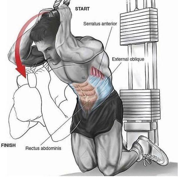 Разгибание рук в блочном тренажёре: практическое руководство по разгибанию рук с верхнего блока стоя