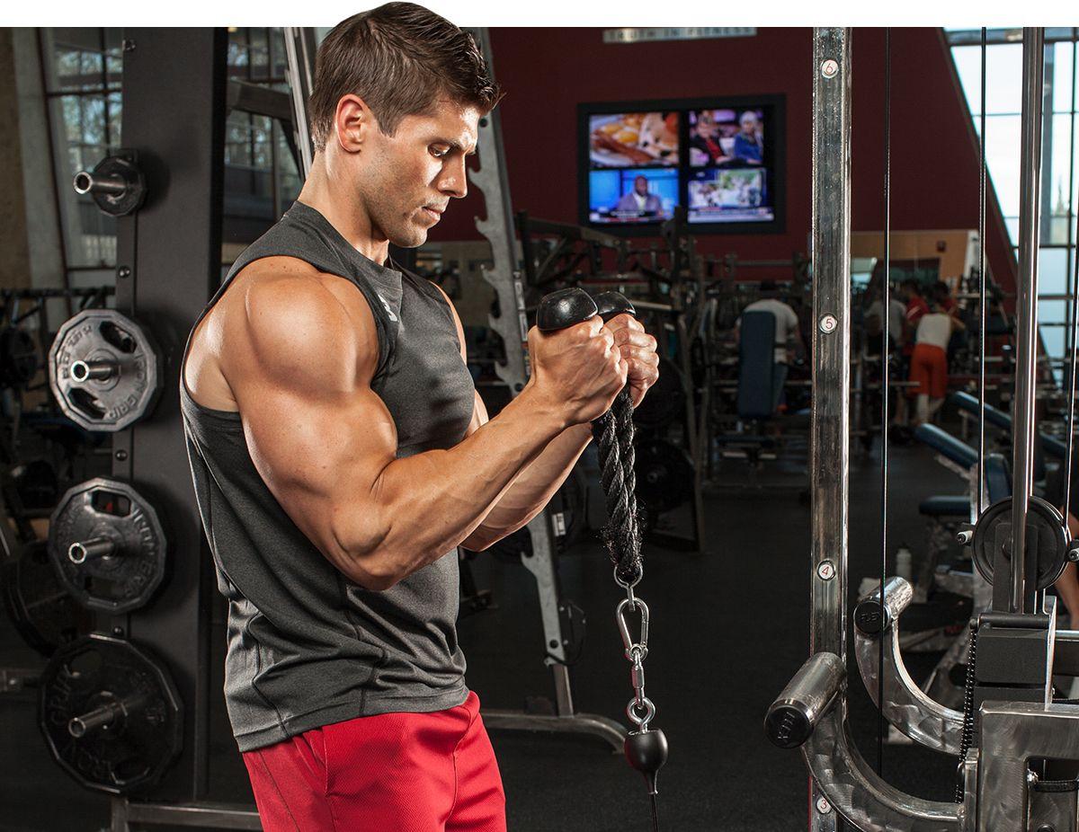 Лучшая тренировка рук: специализированная программа прокачки бицепса и трицепса на массу и рельеф в тренажерном зале для мужчин