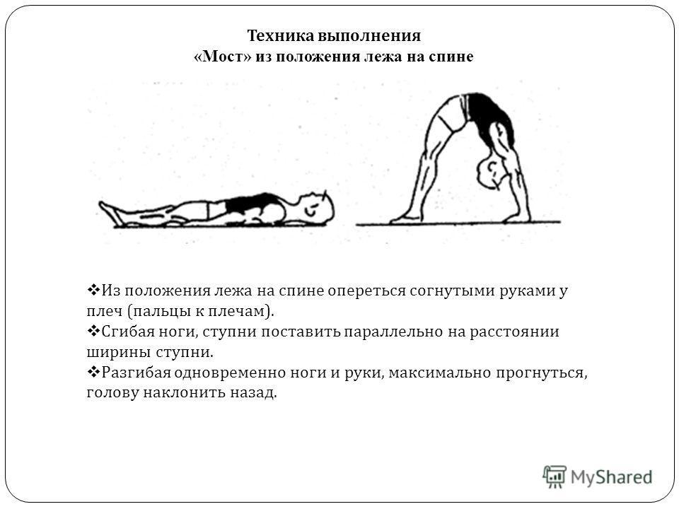 Упражнение «мостик» для здоровья и красоты тела | rulebody.ru — правила тела