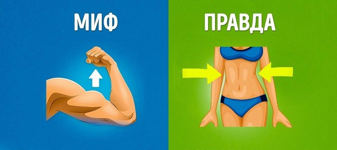 Еще пять фитнес-мифов :: фитнес ::  «живи!