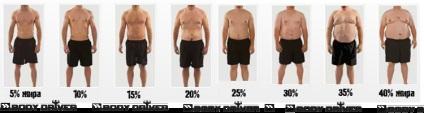 3 жирных правила: сколько жира нужно здоровому организму?