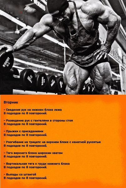 Винса жиронда биография таланты и программа тренировок