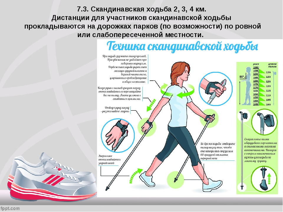 Основные отличия бега от ходьбы