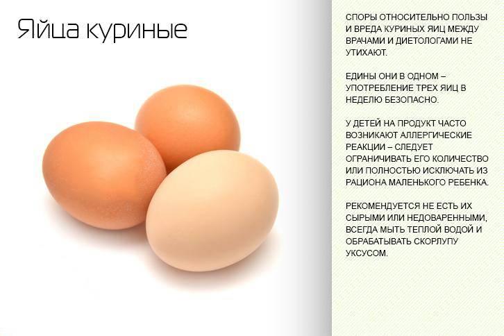 Сколько куриных яиц можно есть в неделю взрослому человеку
