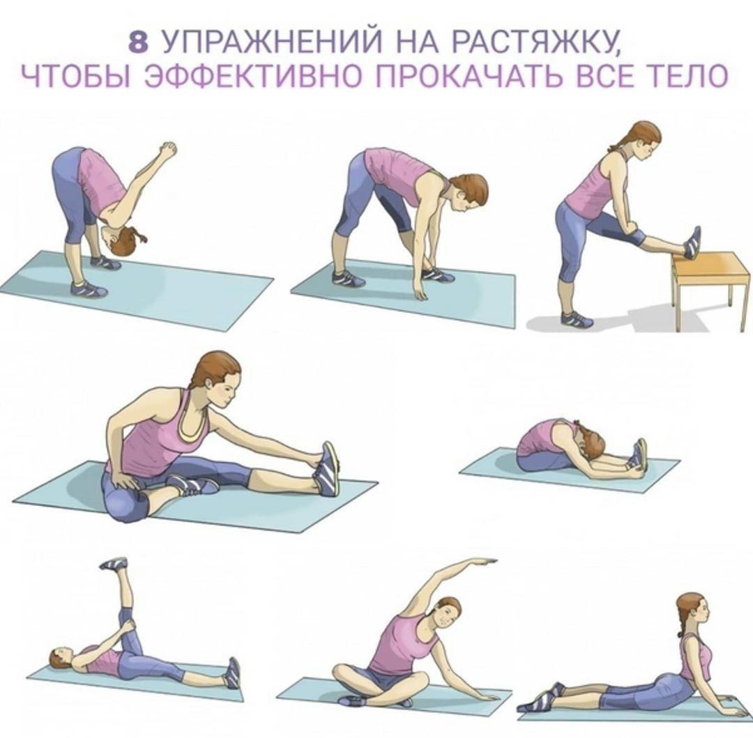 Растяжка: упражнения, стретчинг, для начинающих, гибкость, для всего тела, мышц, комплекс, для мужчин, фото, тренировка