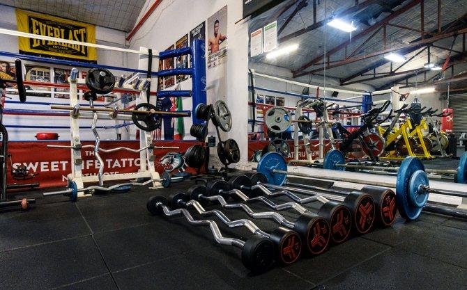 Тренировка боксёра в домашних условиях: программа, план, упражнения