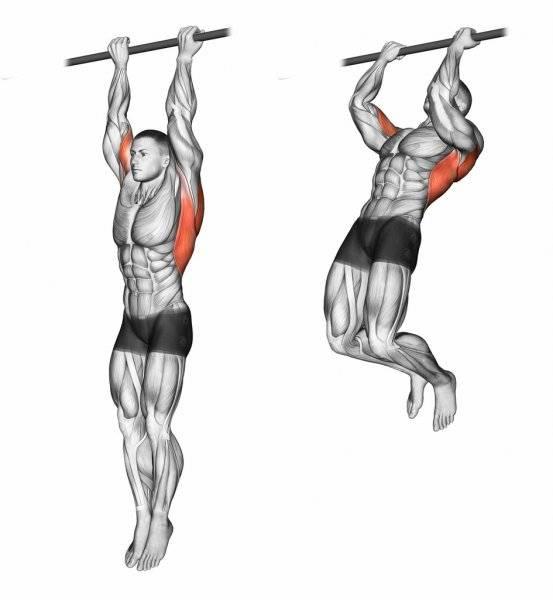 Подтягивания широким хватом: правильная техника, работающие мышцы