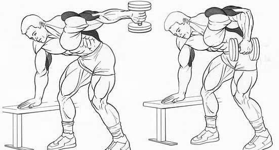 Лучшие упражнения на трицепс в тренажерном зале и в домашних условиях. и программы, чтобы накачать трицепсы для новичка и опытного