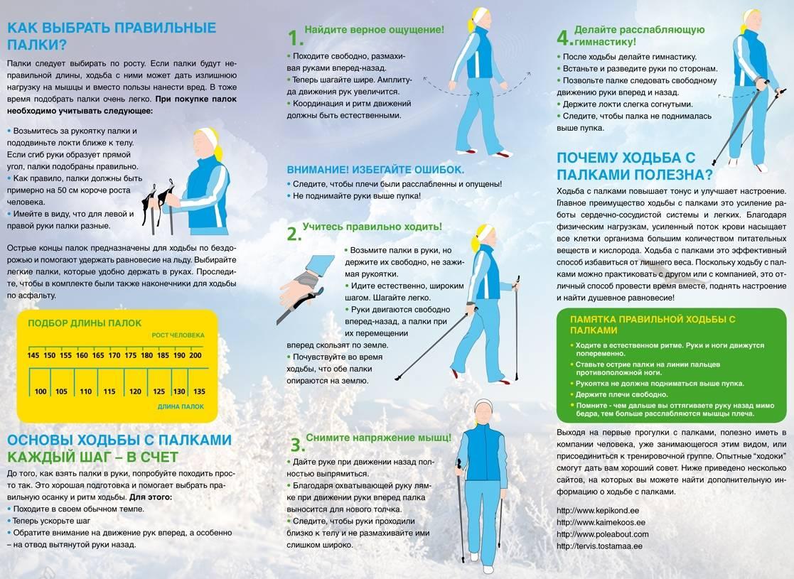 Скандинавская ходьба для похудения, техника скандинавской ходьбы для похудения