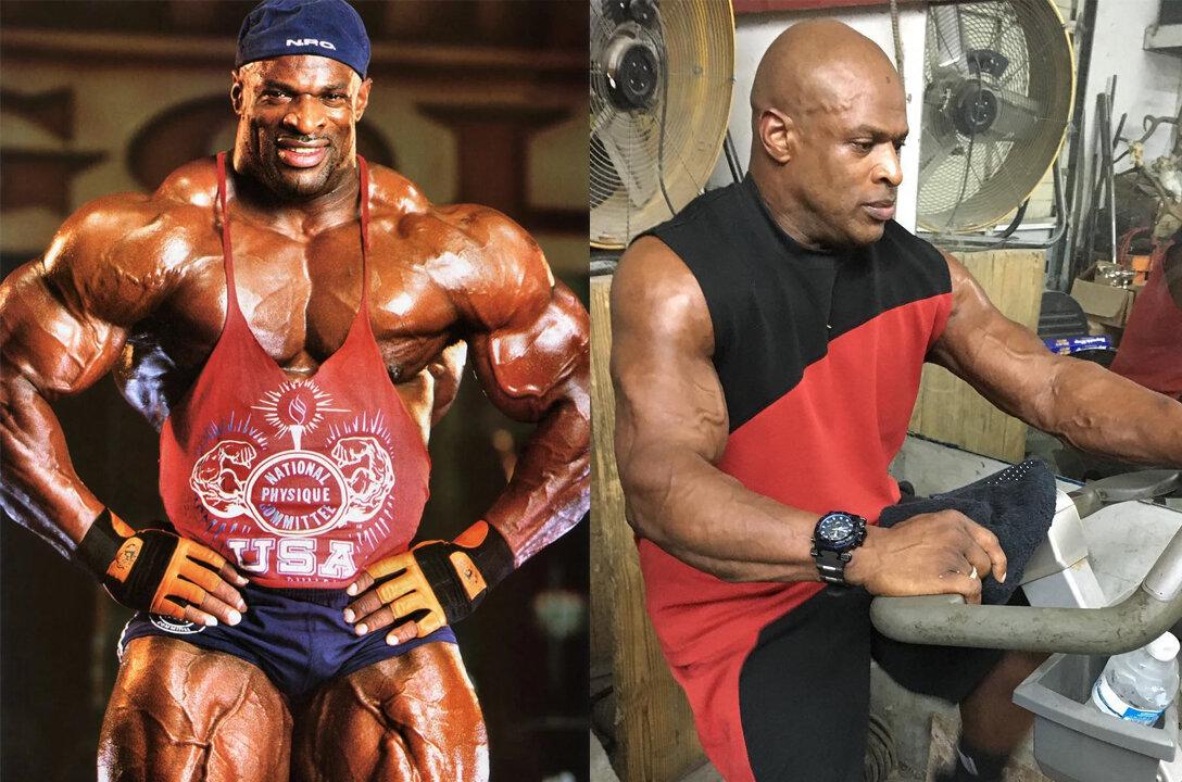 Мышцы без стероидов: сколько можно накачать мышц? в домашних условиях | для девушек и мужчин