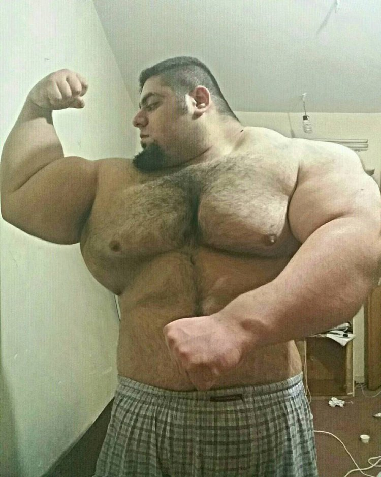Иранский халк саджад гариби – фармакология, стероиды, побочные эффекты, фотошоп