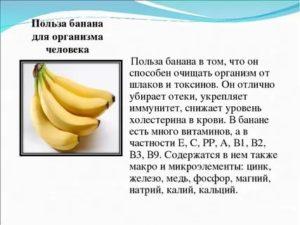 Бананы: польза и вред для организма человека | пища это лекарство