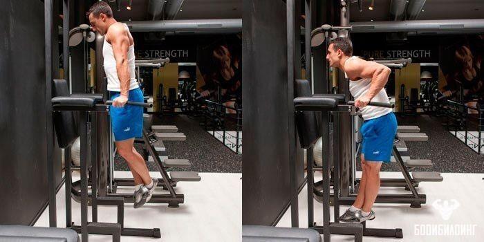 Тренировочные программы для занятий на брусьях. какие мышцы качаются при выполнении упражнений на брусьях | rulebody.ru — правила тела