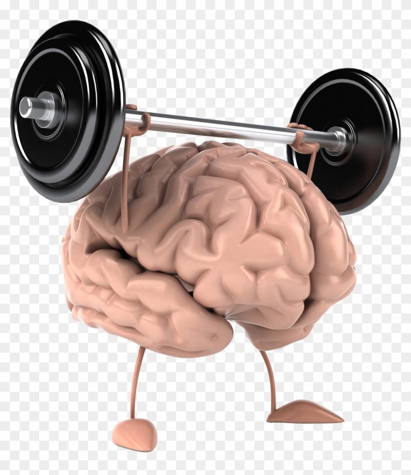 Мышечная память- что это такое, существует ли она, как ее развить